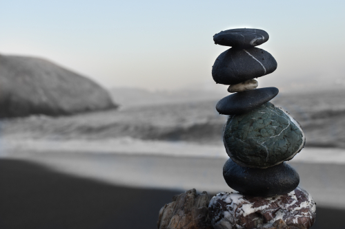 Balance Client Care Academy
